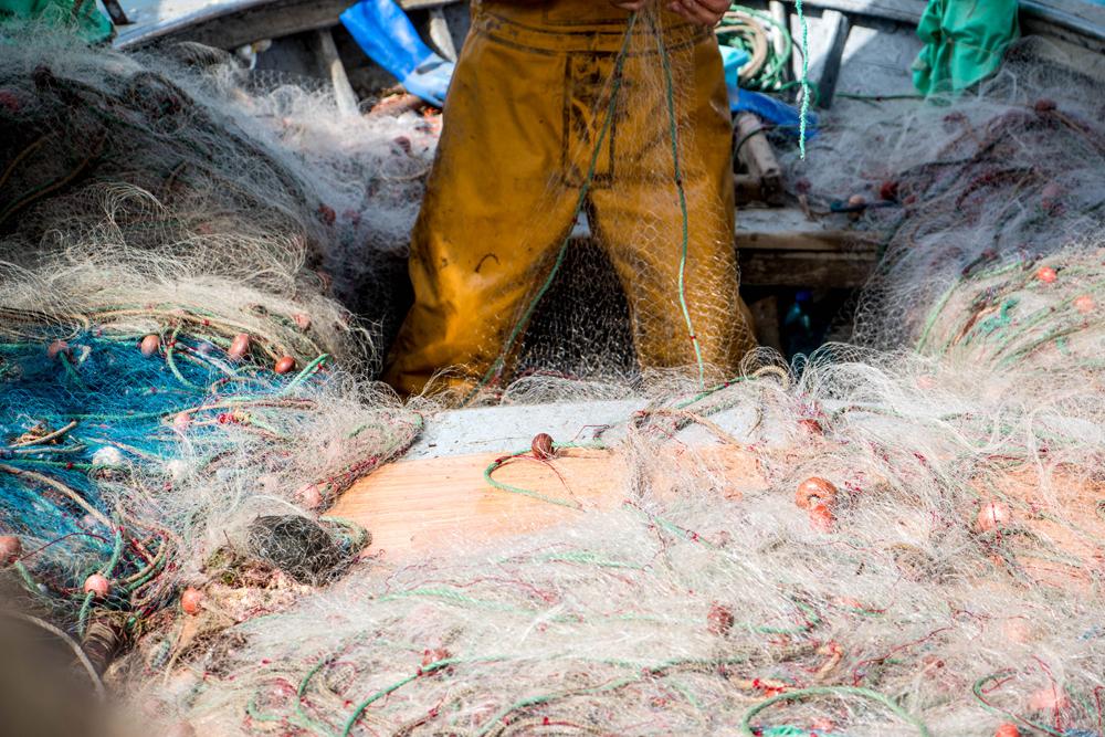 Marseille, retour de pêche, Vieux port