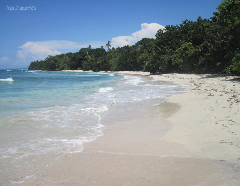 Panama, Bocas Del Toro, île Zapitalla